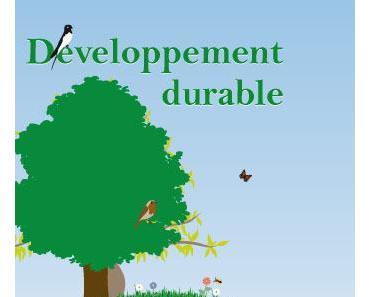 Les couches et le développement durable